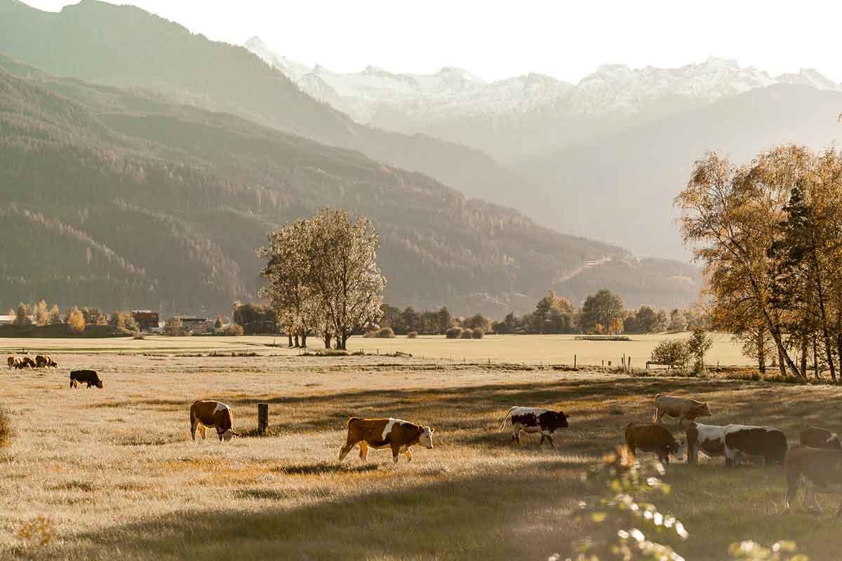 Podzim Alpy